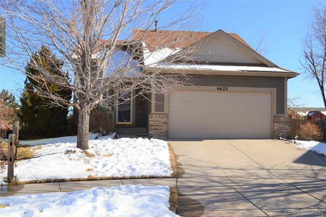 4625 Double Lasso Court, Colorado Springs, CO 80922 (#8056334) :: The Harling Team @ Homesmart Realty Group