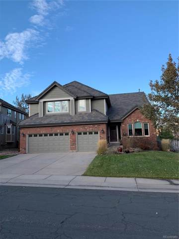 1 Mountain Birch, Littleton, CO 80127 (#8056338) :: HomePopper