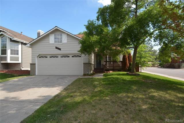 3194 W Sugarbowl Court, Castle Rock, CO 80109 (#8056694) :: The Margolis Team