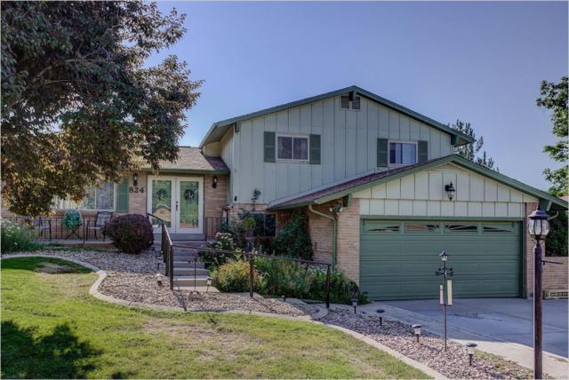 824 S Hoyt Street, Lakewood, CO 80226 (#8060284) :: Bring Home Denver