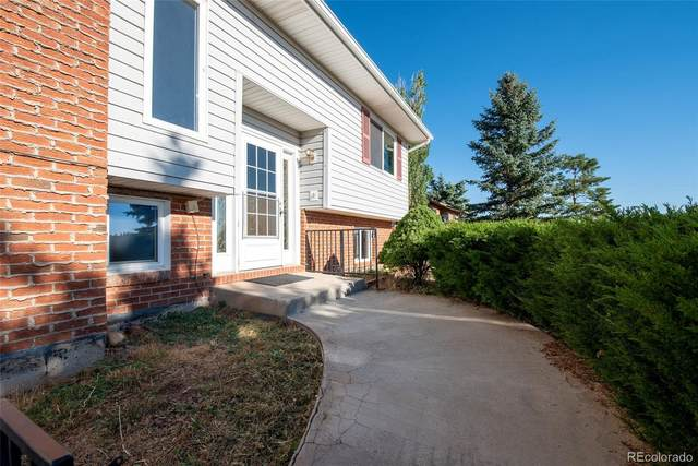 600 El Paso Road, Palmer Lake, CO 80133 (MLS #8064790) :: 8z Real Estate