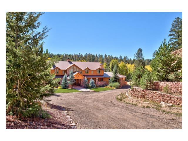 10 Kutsu Ridge Road, Florissant, CO 80816 (MLS #8065169) :: 8z Real Estate