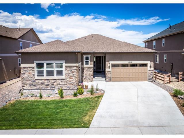 5858 Leon Young Drive, Colorado Springs, CO 80924 (MLS #8065831) :: 8z Real Estate
