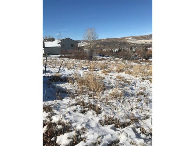 359 Vista Verde Drive, Hayden, CO 81639 (#8067177) :: My Home Team