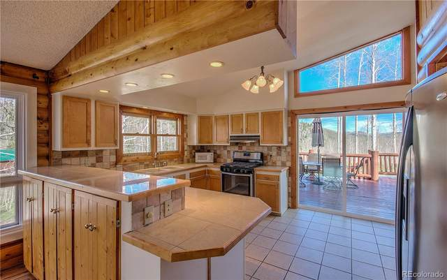 27085 Beaver Canyon Drive, Clark, CO 80428 (#8069461) :: RazrGroup