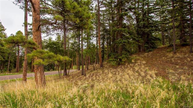 615 Meadow Lark Lane, Woodland Park, CO 80863 (#8069953) :: The Galo Garrido Group