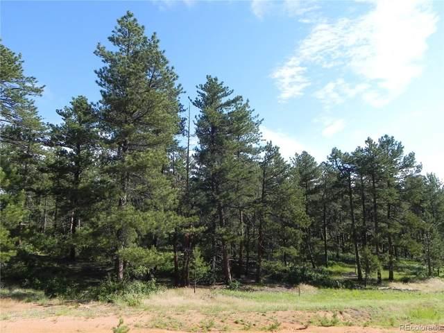 4485 Delaware Drive, Larkspur, CO 80118 (MLS #8071668) :: Find Colorado