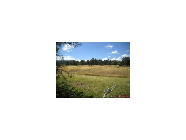 1458 Von Heyl Lane, Fort Garland, CO 81133 (MLS #8076178) :: 8z Real Estate