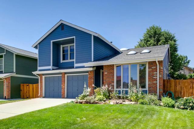 11411 Red Cloud Peak, Littleton, CO 80127 (#8076262) :: Wisdom Real Estate