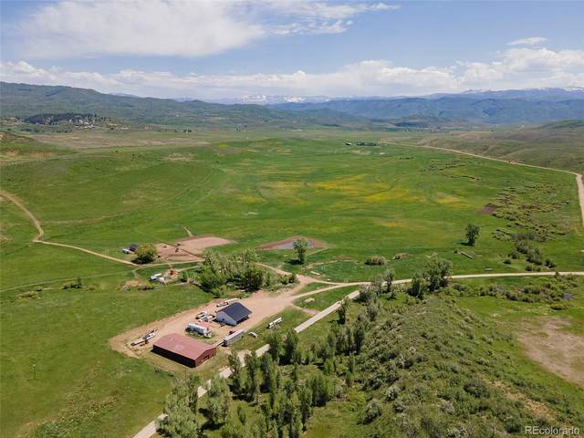 19901 County Road 56, Steamboat Springs, CO 80487 (#8077846) :: Bring Home Denver with Keller Williams Downtown Realty LLC