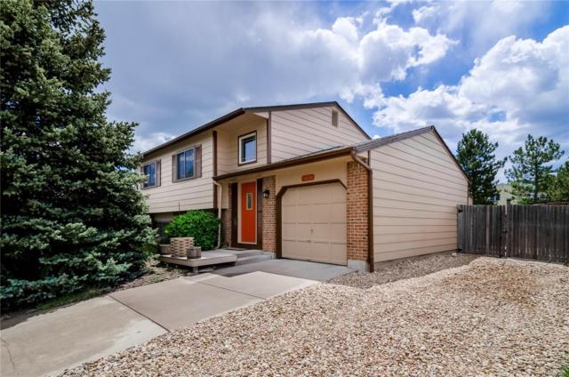 9616 W David Avenue, Littleton, CO 80128 (#8078542) :: House Hunters Colorado