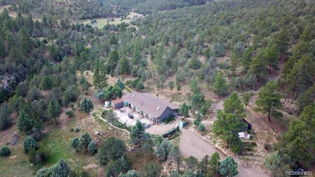 7500 Pavo Canyon Road, Trinidad, CO 81082 (#8080877) :: The DeGrood Team