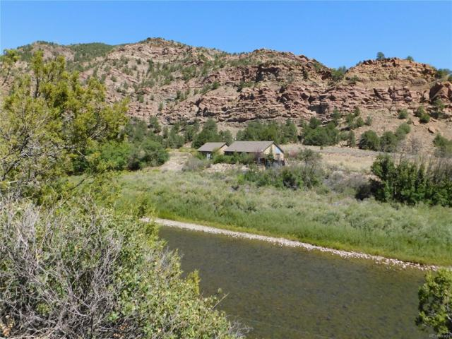 4574 County Road 45, Howard, CO 81233 (#8080957) :: The DeGrood Team