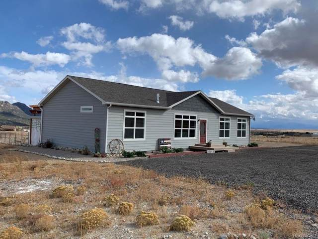 16688 Caleb Court, Buena Vista, CO 81211 (#8083600) :: HomePopper