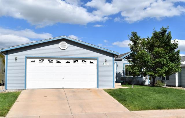 4584 Gray Fox Heights, Colorado Springs, CO 80922 (#8088779) :: The Heyl Group at Keller Williams