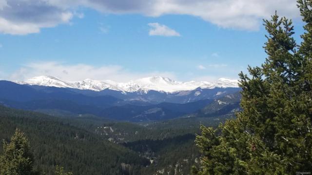 3913 Mountainside Trail, Evergreen, CO 80439 (#8090868) :: Wisdom Real Estate