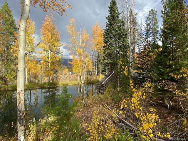 134 Mad Moose Lane, Grand Lake, CO 80447 (#8091380) :: The DeGrood Team
