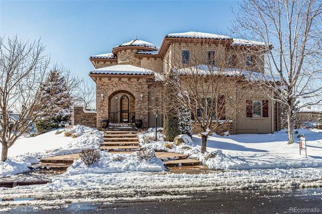 9587 S Shadow Hill Circle, Lone Tree, CO 80124 (#8093180) :: The Dixon Group