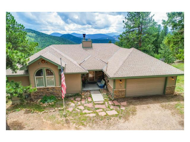 224 Foxtail Circle, Black Hawk, CO 80422 (MLS #8094281) :: 8z Real Estate