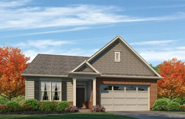 15586 Spruce Street, Thornton, CO 80602 (MLS #8094337) :: The Sam Biller Home Team