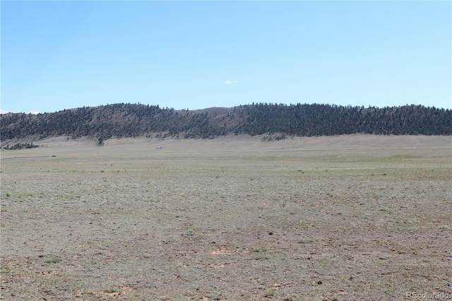 7496 Routt Road, Hartsel, CO 80449 (MLS #8096967) :: 8z Real Estate