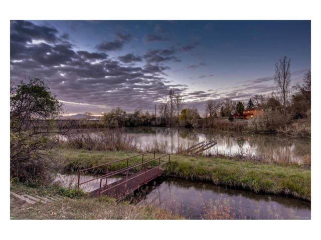 Vacant Land Pond/Lake, Littleton, CO 80120 (MLS #8099138) :: 8z Real Estate