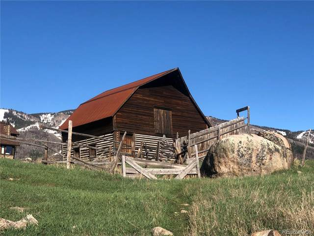 855 Angels View Way, Steamboat Springs, CO 80487 (#8099893) :: The DeGrood Team