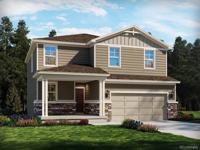 651 Silver Rock Trail, Castle Rock, CO 80104 (MLS #8100606) :: 8z Real Estate