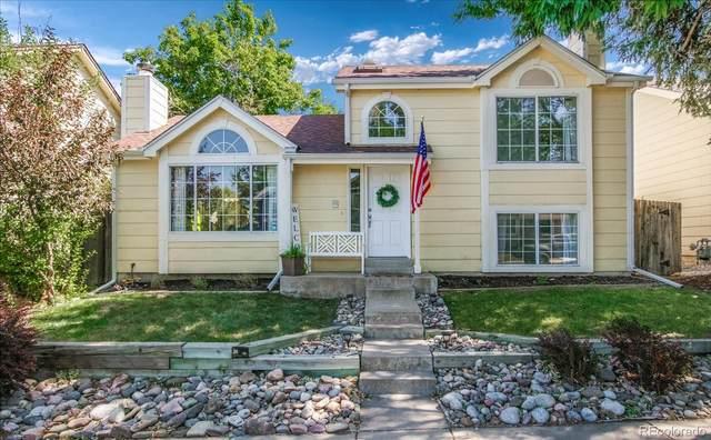108 Quicksilver Avenue, Castle Rock, CO 80104 (#8100743) :: The HomeSmiths Team - Keller Williams