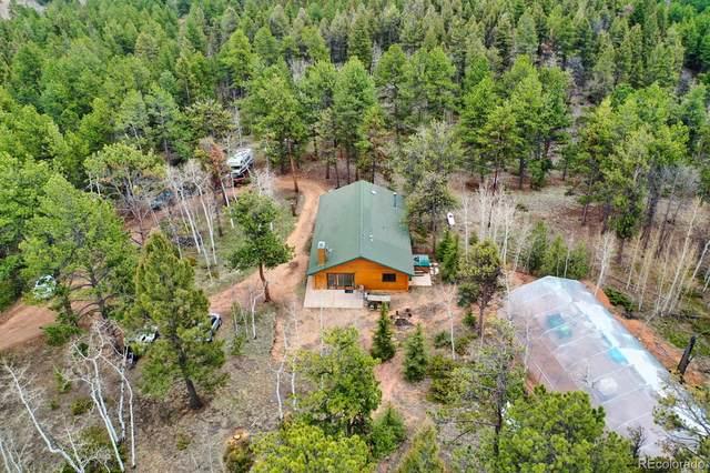 140 Wrangler Creek Circle, Florissant, CO 80816 (#8104144) :: iHomes Colorado