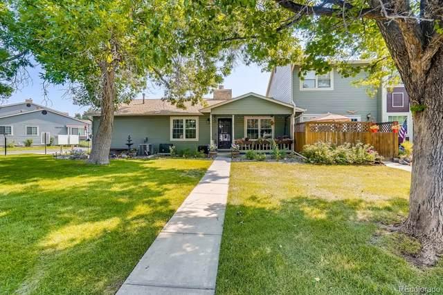 10050 Quivas Street, Thornton, CO 80260 (MLS #8108285) :: Find Colorado