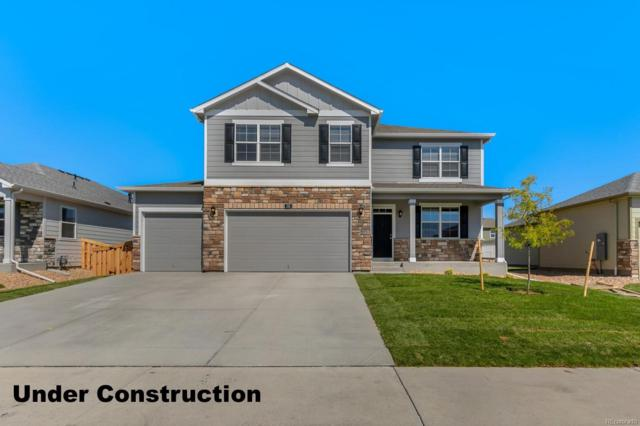 1800 Nightfall Drive, Windsor, CO 80550 (#8109359) :: The Heyl Group at Keller Williams