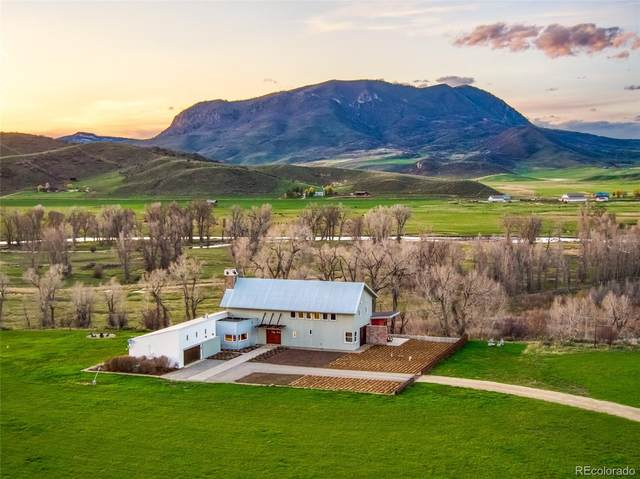 25410 County Road 42, Steamboat Springs, CO 80487 (#8109756) :: The DeGrood Team