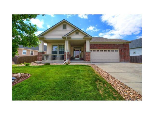 1790 Granger Circle, Castle Rock, CO 80109 (MLS #8110623) :: 8z Real Estate