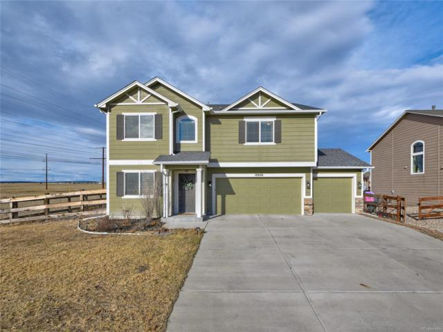 10806 Cascading Spring Circle, Peyton, CO 80831 (#8110885) :: The DeGrood Team