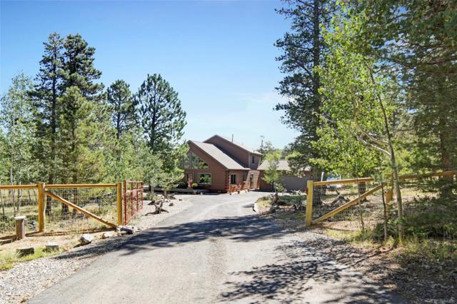58 Bristlecone Circle, Bailey, CO 80421 (#8113612) :: The Peak Properties Group