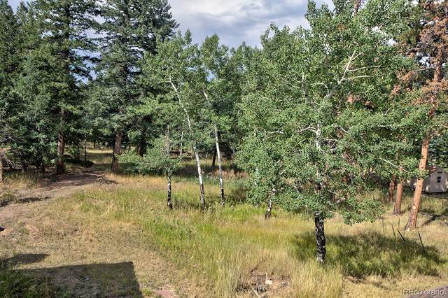 6973 Highway 73, Evergreen, CO 80439 (MLS #8113763) :: Bliss Realty Group