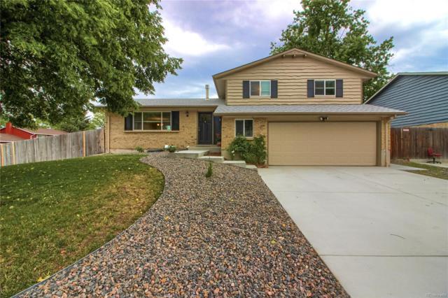 1204 S Johnson Way, Lakewood, CO 80232 (#8115198) :: The HomeSmiths Team - Keller Williams
