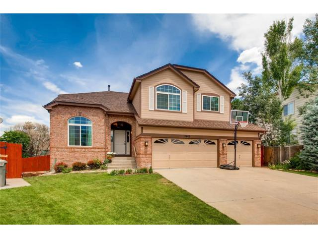 7443 Indian Wells Cove, Lone Tree, CO 80124 (MLS #8115691) :: 8z Real Estate