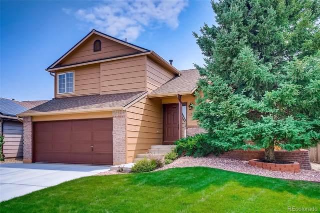 11250 W Aqueduct Drive, Littleton, CO 80127 (#8116349) :: Symbio Denver