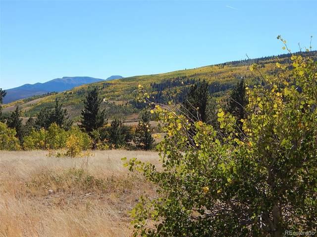 914 Sheep Ridge Road, Fairplay, CO 80440 (#8116429) :: The HomeSmiths Team - Keller Williams