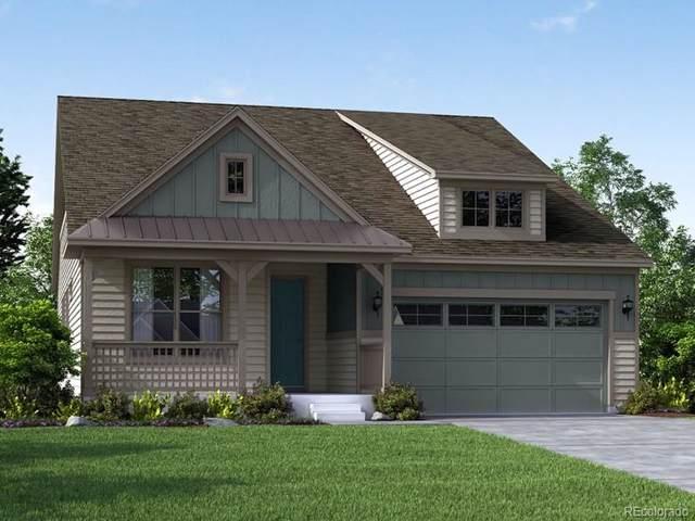 8503 Estes Park Avenue, Littleton, CO 80125 (#8118073) :: The Peak Properties Group