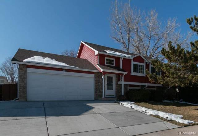 6011 S Quail Way, Littleton, CO 80127 (MLS #8118906) :: 8z Real Estate