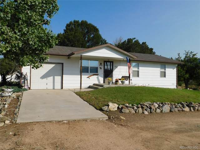 371 County Road 6, Coaldale, CO 81222 (#8122583) :: The Artisan Group at Keller Williams Premier Realty