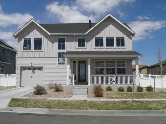 4553 Tanner Peak Trail, Brighton, CO 80601 (#8131938) :: The Pete Cook Home Group