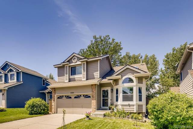9585 Brentford Drive, Highlands Ranch, CO 80130 (#8132924) :: The Dixon Group