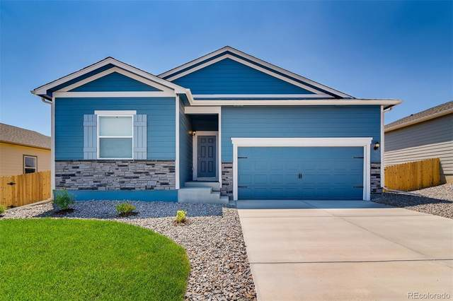 993 Cascade Falls Street, Severance, CO 80550 (#8134300) :: The Dixon Group