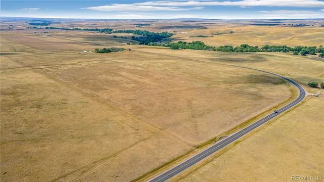 43654 Vega Street, Kiowa, CO 80117 (#8137938) :: Symbio Denver