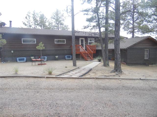 24160 Agate Trail, Deer Trail, CO 80105 (#8141096) :: Structure CO Group