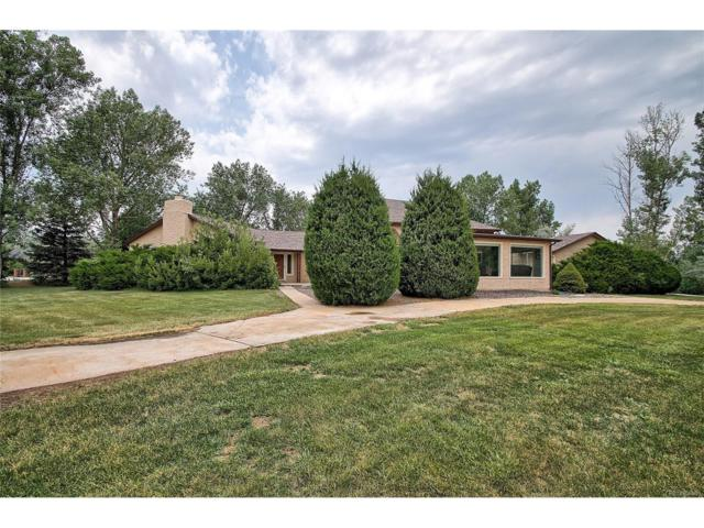 6611 S Abilene Way, Centennial, CO 80111 (#8142634) :: The Peak Properties Group